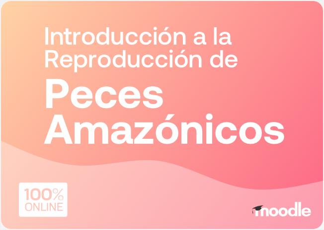 peces_amazonicos
